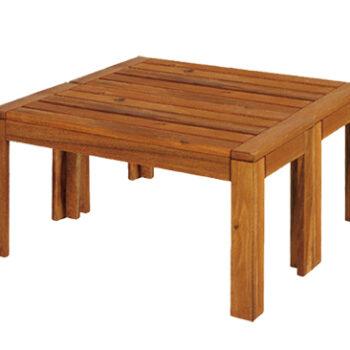 Table Basse Exotique